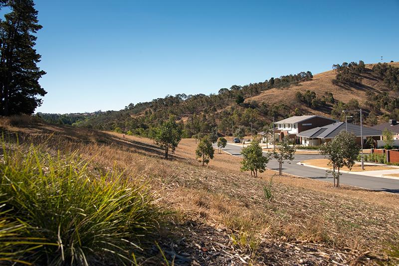 bushfire assessment